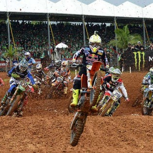 Cairoli-brazil